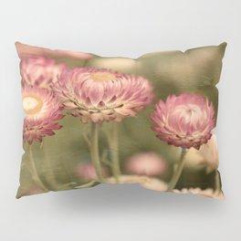DAISY DESERT Pillow Sham