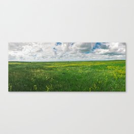 Endless Field Canvas Print