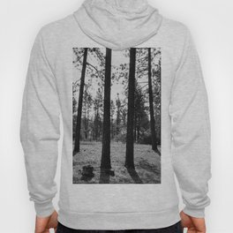The Space Between Spaces Hoody