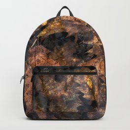 Leaves in a Rock Pool Square Backpack