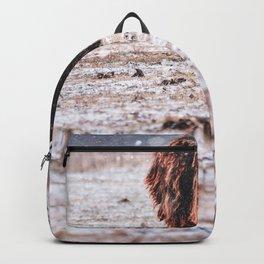 bison #society6 #decor #buyart Backpack