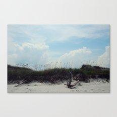 beach dunes Canvas Print