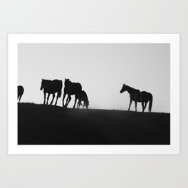 Horse Cantering with Bird Art Print
