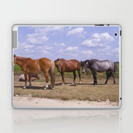 New Forest Ponies Laptop & iPad Skin