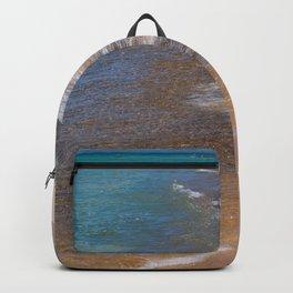 Lake_Michigan Beach, Charlevoix - III Backpack