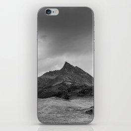 Alpine summer, Austria iPhone Skin
