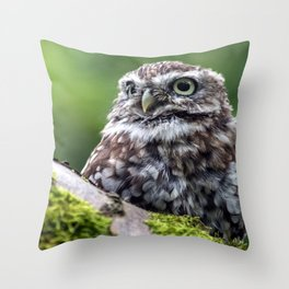 owl in green Throw Pillow