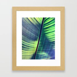 Tropical Plant Leaf Framed Art Print