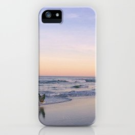 Taking Flight iPhone Case