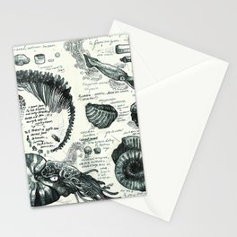 Sketchbook - Fossils Stationery Cards