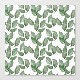 Watercolor green leaves pattern Canvas Print