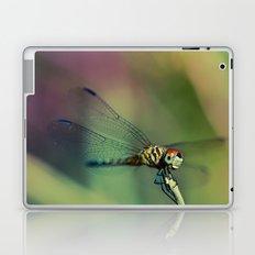 Blue Pirate II Laptop & iPad Skin