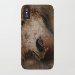 Vintage portrait of the horse iPhone Case