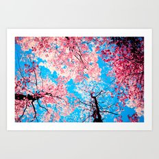 Color Drama III Art Print