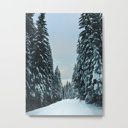 Snow Covered Roads Metal Print