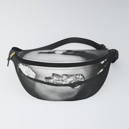 Sparkle And Shine Fanny Pack