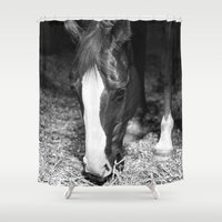 harley Shower Curtains featuring Harley by Yanina May Photography