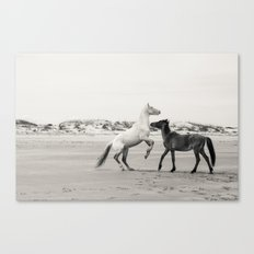 Wild Horses 5 - Black and White Canvas Print