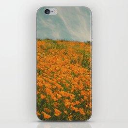 California Poppies 016 iPhone Skin