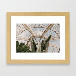 Palm House Framed Art Print