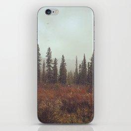 Alaskan Wonderland iPhone Skin