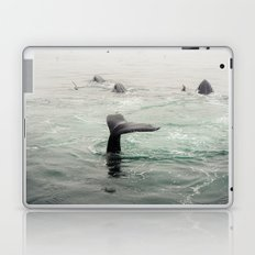 Whale Tail Laptop & iPad Skin