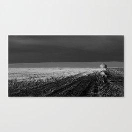 tornado country Canvas Print
