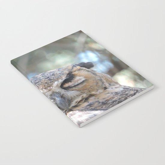 Owl Wink Notebook