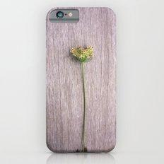 Newport Bloom IV iPhone 6s Slim Case