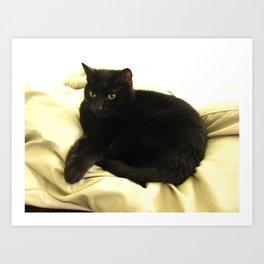 Queen Kitty 2795 Art Print