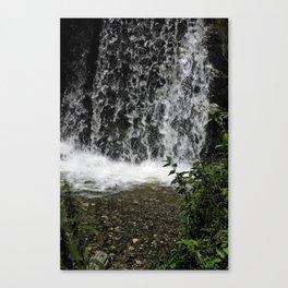 Small waterfall near Sadu Sibiu Romania Canvas Print
