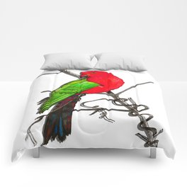 One King Parrot - Red Comforters