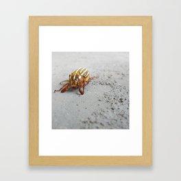 Spiritual Visit from a Scarab Beetle Framed Art Print