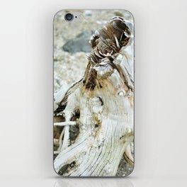 Deer Isle Series: Sea Stump iPhone Skin