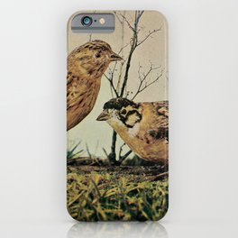 Vintage Print - Birds and Nature (1905) - Smith's Longspur iPhone Case