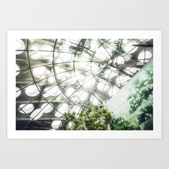 Heliconius sara vs. The Faux Rainforest Art Print