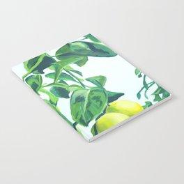 Foliage I / Lemon Tree Notebook