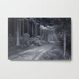 A Light at the End. Metal Print