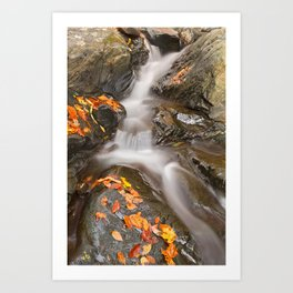 Glen Artney Stream Art Print