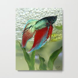 Bubble Nest Builder Metal Print
