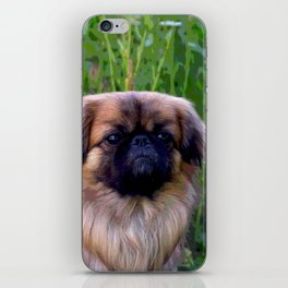 Lion Dog iPhone Skin