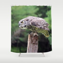 Ready to Fly: Great Horned Owl Shower Curtain