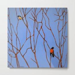 Song birds Metal Print