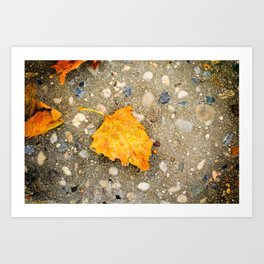 """Autumn Leaf"" Art Print"