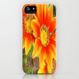 Vibrant Yellow and Vermillion Gazania Rigens Flower iPhone Case