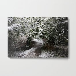 Snowy Path in The Trees Metal Print