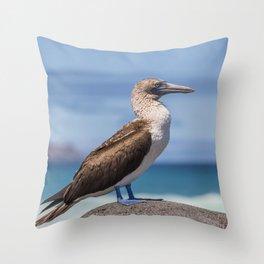 Galapagos blue footed booby bird photography Throw Pillow