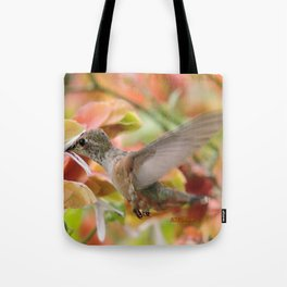 Little Ms. Hummingbird in for More Licks Tote Bag