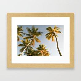 Golden Palm Trees Framed Art Print