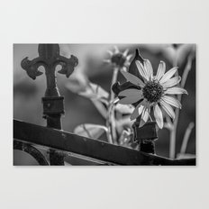 Colorless Canvas Print
